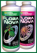 Floranova grow and bloom